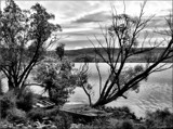 From the shore of Lake Alexandrina by LynEve, photography->general gallery