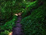 Show me the way by biffobear, photography->landscape gallery