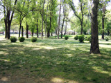 The Park in Skopje by koca, photography->landscape gallery