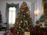 Christmas Tree Inside Gov. Mansion by connodado, Holidays gallery