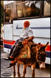 2 Kinds of Travel! by Dunstickin, photography->animals gallery