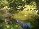 japanese tea garden by jjayjohn313, photography->landscape gallery