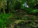 Washingwell steps by biffobear, photography->landscape gallery