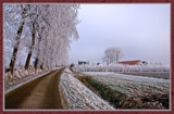 Winter In Zeeland 2009 (11) by corngrowth, Photography->Landscape gallery