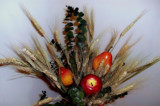 Artificial Plant Display by mesmerized, photography->general gallery