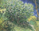 Lilacs by Vincent van Gogh, Illustrations->Traditional gallery