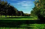 Wispy by biffobear, photography->landscape gallery