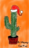 Merry Cactus by bfrank, holidays->christmas gallery