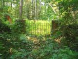 Hidden Graveyard by TerryT, Photography->Landscape gallery