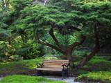 Bench by rvdb, photography->gardens gallery