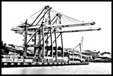 Port Chalmers Cranes by flanno2610, contests->b/w challenge gallery