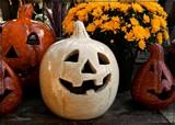 Ghost Pumpkin! by trixxie17, holidays gallery