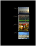 Seasons by ccmerino, Photography->Landscape gallery