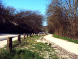 Zeeland Countryside (13), Sandy Country Road by corngrowth, Photography->Landscape gallery