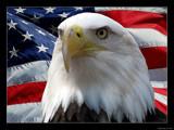 American Way by Hottrockin, Photography->Manipulation gallery