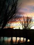 Winter Sunset by Kimberwe, photography->sunset/rise gallery