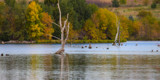 Walnut Creek in the Fall by Pistos, photography->nature gallery