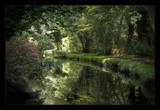 reflections in the watergarden by JQ, Photography->Landscape gallery