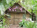 Orchid Shack by Bsm1, photography->architecture gallery