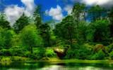 Cragside Lake by biffobear, Photography->Landscape gallery