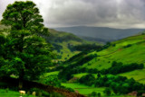 Wensleydale2 by biffobear, Photography->Landscape gallery