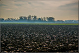Mist Rolling In by corngrowth, photography->landscape gallery