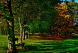 A shady place by biffobear, photography->landscape gallery