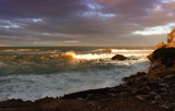 Golden Waves by LynEve, photography->shorelines gallery