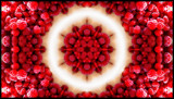 Raspberries & Cream by LynEve, photography->manipulation gallery