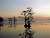 A few minutes later by tweezer, Photography->Shorelines gallery