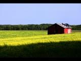 Prairie Landscape by brphoto, photography->landscape gallery
