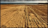 Sand Lines by Dunstickin, photography->shorelines gallery