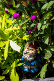 Gnomes (11) by Pistos, photography->sculpture gallery