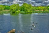 Village pond 1 by biffobear, Photography->Shorelines gallery