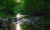 7 Mile Creek 6 by rriesop, photography->landscape gallery
