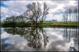 Creek Reflections by corngrowth, photography->shorelines gallery