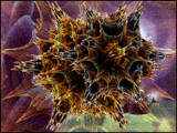 space II by Flmngseabass, abstract gallery