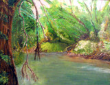 Conestoga river - Brownstown, P.A. by rotcivski, illustrations->traditional gallery