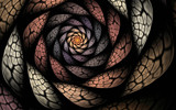 Withered Rose by tealeaves, Abstract->Fractal gallery