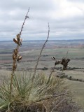 Western Nebraska in color by antonia02, Photography->Landscape gallery