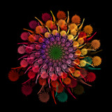 Fall Mums Bouquet by razorjack51, Abstract->Fractal gallery