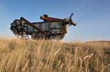 Prairie Dinosaur by Nikoneer, photography->still life gallery