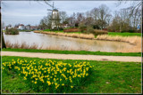 Hope In The Spring by corngrowth, photography->landscape gallery