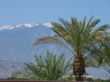 Spring in Palm Springs by pics, Photography->Landscape gallery
