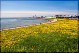 Seaside Spring by corngrowth, photography->shorelines gallery