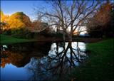 Winter reflections by LynEve, photography->landscape gallery