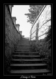 Stairway to Heaven by Gothic, Photography->General gallery