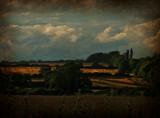 Golden Fields by biffobear, photography->landscape gallery