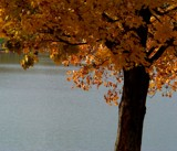 Neg. Water by thebitchyboss, contests->Negative Space gallery