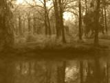 Sepia Ice Dream by jojomercury, Photography->Landscape gallery